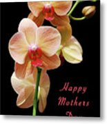 Mothers Day Card 8 Metal Print