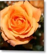 Mothers  Day Rose Metal Print