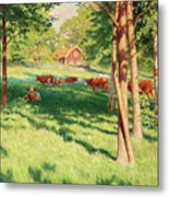Motif From Skedevid In Tjarstad Metal Print
