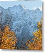 Mount Currie Autumn Metal Print