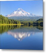 Mount Hood On A Sunny Day Metal Print