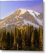 Mount Raineer 2 Metal Print