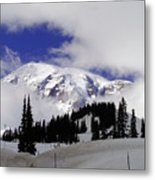 Mount Rainier National Park Metal Print