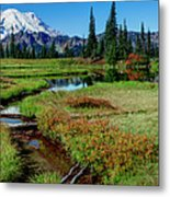 Mount Rainier- Upper Tipsoo Lake Metal Print