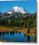 Natures Reflection - Mount Rainier Metal Print
