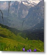 Mount Wetterhorn And The Grindelwald Metal Print by Anne Keiser
