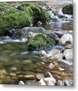 Mountain Creek Spring Nature Scene Metal Print