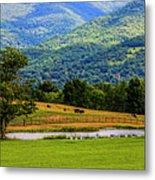 Mountain Farm With Pond Metal Print