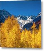 Mountain Gold Metal Print