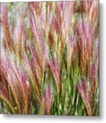 Mountain Grass Metal Print