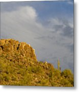 Mountain Guardians Metal Print