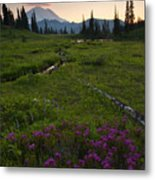 Mountain Heather Sunset Metal Print