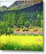 Mountain Horses Metal Print