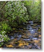 Mountain Laurels Light Up Panther Creek Metal Print