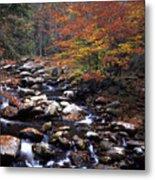 Mountain Leaves In Stream Metal Print