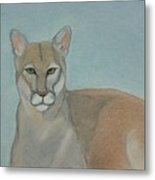 Mountain Lion - Pastels - Color - 8x12 Metal Print