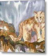 Mountain Lion On The Rocks  Metal Print
