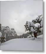 Mountain Lonely Tree Metal Print