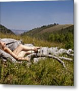 Mountain Meadow I Metal Print