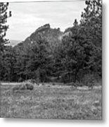 Mountain Peak Through The Trees In Black And White Metal Print
