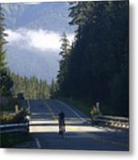 Mountain Ride Metal Print