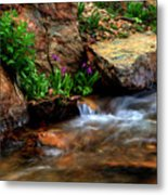 Mountain Stream Garden Metal Print