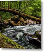 Mountain Stream Iv Metal Print