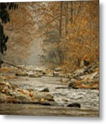 Mountain Stream With Tree Overhang #1 Metal Print