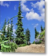 Mountain Trail - Olympic National Park Metal Print