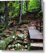 Mountain Trail With Staircase In Autumn Forest Metal Print