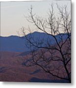 Mountain Tree Metal Print
