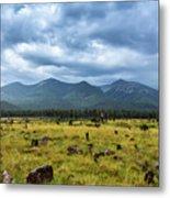 Mountain View After Rain Metal Print