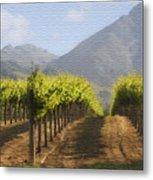 Mountain Vineyard Metal Print