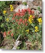 Mountain Wild Flowers Metal Print
