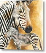 Mountain Zebra Metal Print