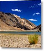 Mountains And Green Vegetation Chagor Tso - Lake Leh Ladakh Jammu Kashmir India Metal Print