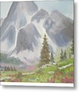 Mountains And Meadows Metal Print