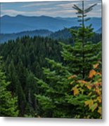 Mountains Around Priest Lake Metal Print