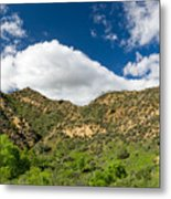 Mountains At Towsley Canyon In Southern California Metal Print