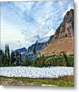 Mountains In Glacier National Park 2 Metal Print