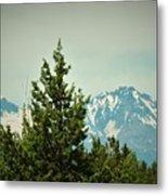 Mountains Of Oregon Metal Print