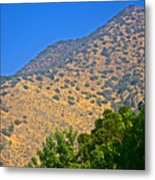 Mountainside From Wealthy Neighborhood Above Santiago-chile Metal Print