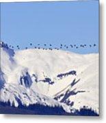 Mountaintop Geese Metal Print