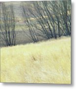 Moving On From Virginia Dale Metal Print
