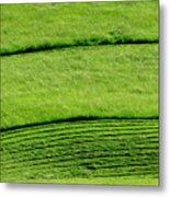 Mowing Hay  Metal Print by Thomas R Fletcher