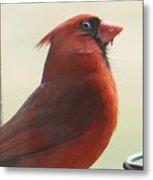 Mr Cardinal Metal Print
