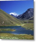 Mt Aconcagua And Laguna Horcones Metal Print