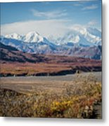 Mt Denali View From Eielson Visitor Center Metal Print