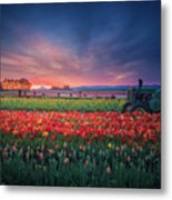 Mt. Hood And Tulip Field At Dawn Metal Print