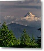 Mt Hood From Grassy Knoll Metal Print